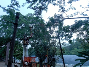 Outbond Flying Fox Di Telaga Arwana